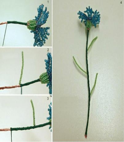 hạt cườm xanh